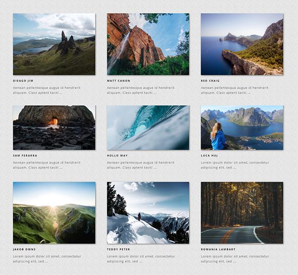 Galeria - Ultimate WordPress Album, Photo Gallery Plugin - 4